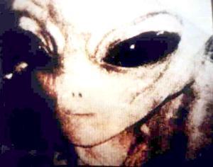 https://gudangilmugoib.files.wordpress.com/2010/12/disclosure-alien.jpg?w=300